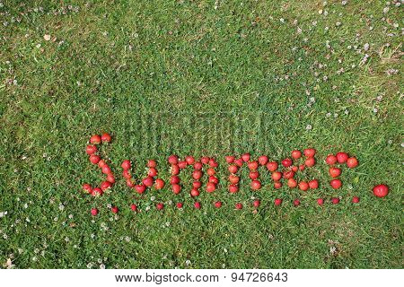The Word Summer Spelt out in Strawberries