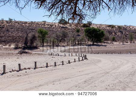 Road In Kgalagadi Transfontier Park