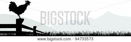 Cock Standing Silhuette Design Vector Rooster Isolated