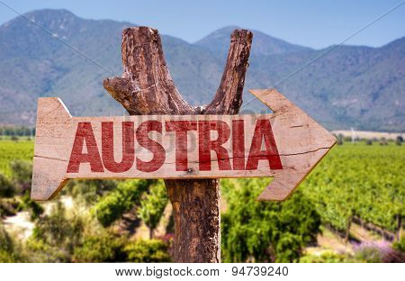 Austria wooden sign with winery background