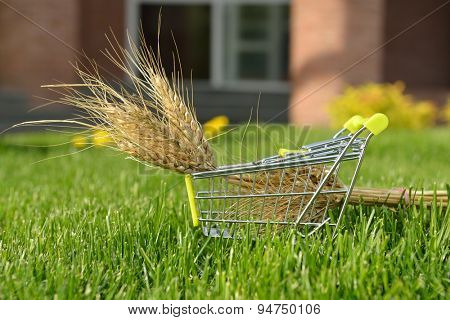 mini shopping cart with wheat outdoor