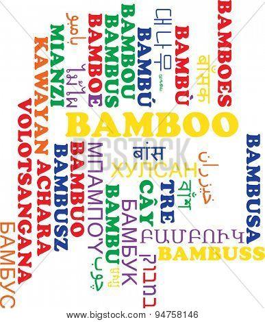 Background concept wordcloud multilanguage international many language illustration of bamboo