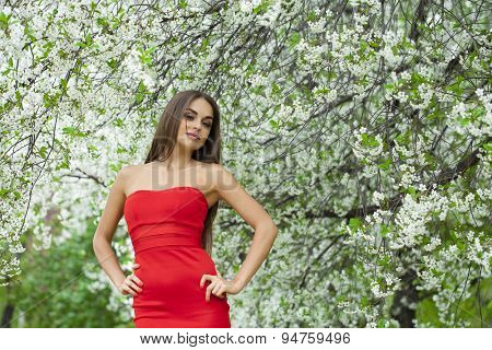 Portrait of a beautiful young brunette woman in red dress on the background of the cherry blossoms, spring park