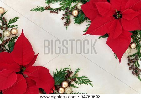 Christmas and thanksgiving poinsettia flower background border on parchment paper.
