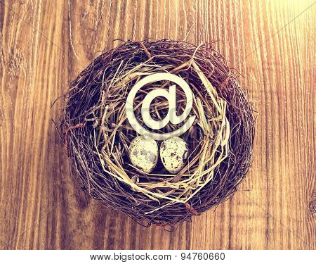 egg with mail sign with eggs in nest