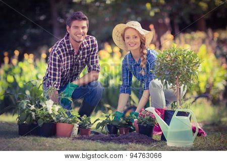 Happy young couple gardening together on a sunny day