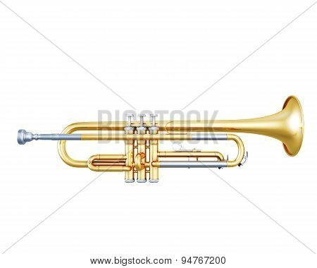 Trumpet Side View