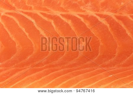 Close up of  fresh salmon fillet.