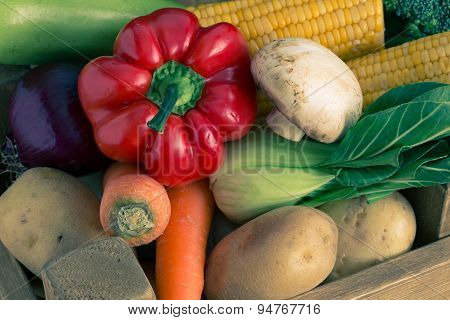 Big set of vegetables