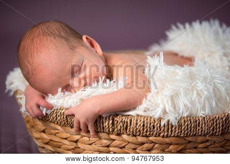 Newborn baby girl portrait inside the wicker basket