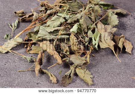 Heap Of Dried Lemon Balm On Concrete Surface