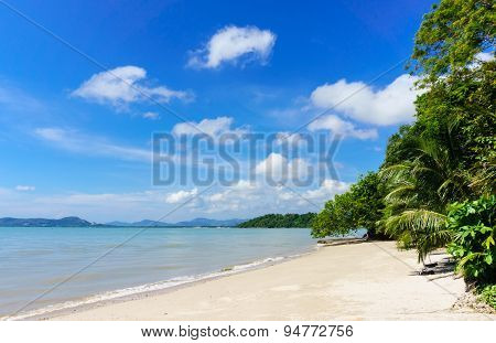 Coast of Phuket. Thailand Tree in front view and background with moutain and blue sky