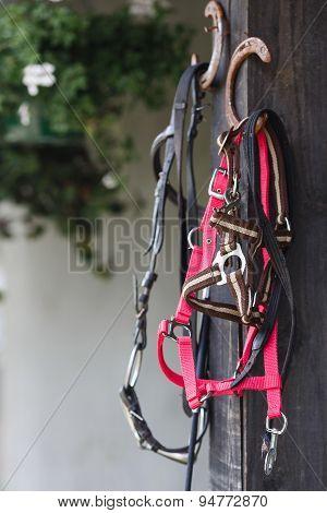 Attributes Hobby Horse Rider