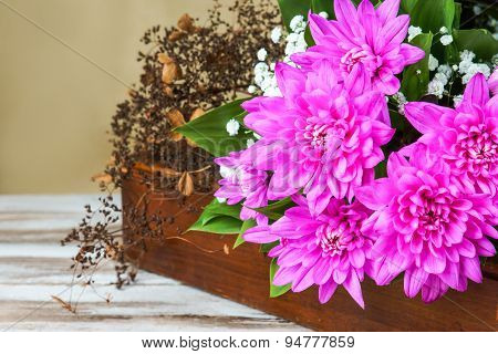 Dahlia in a wood box