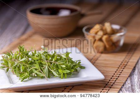 Edible Sedum Plant.