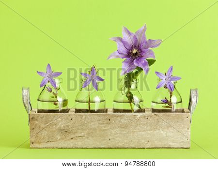 Wooden tray with small bottles containing three campanula and one Clematis flowers