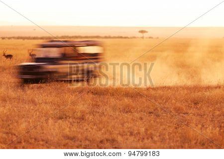 Safari Jeep Driving
