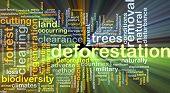 picture of deforestation  - Background concept wordcloud illustration of deforestation glowing light - JPG