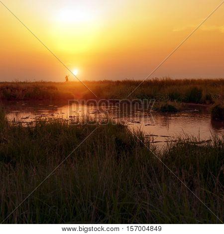 boundless clouds copper ear evening far fog gold grass low quiet rest sand shine smoke steppe sun sunset wilderness