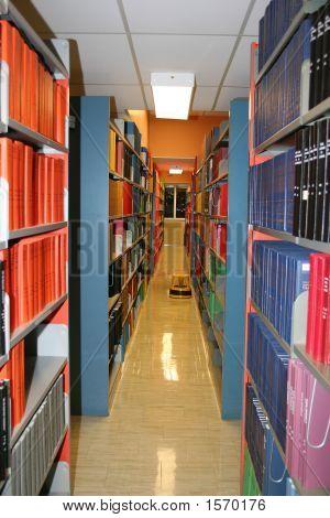 Library Shelves Ii