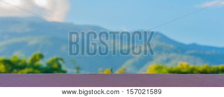 minifigure doll idea image of photographer with blur beautiful mountain and blue sky on day time in background.