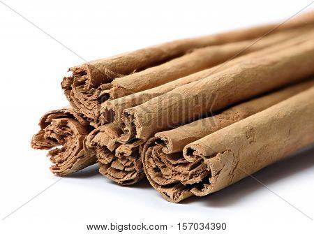 True Cinnamon Sticks Isolated