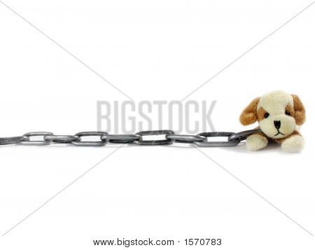 Soft Toy Puppy And Circuit On A White Background