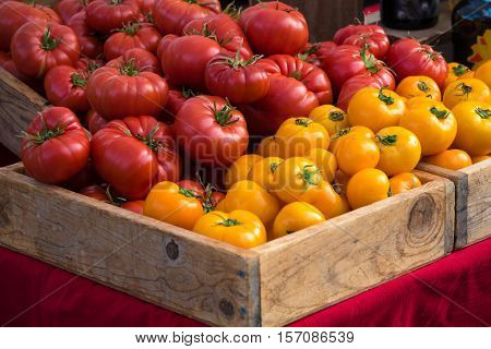 Red and yellow tomatos at farmer's market
