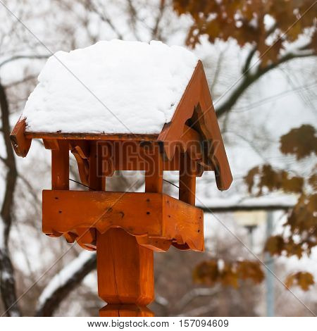 Bright bird house outdoors in winter covered with snow in park