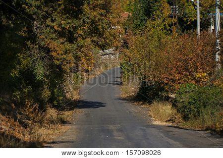 Vintage photo of village scene. Path in the village.