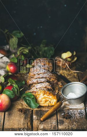 Apple strudel cake with cinnamon, anise, sugar powder and fresh apples on rustic wooden background, selective focus, copy space, vertical composition