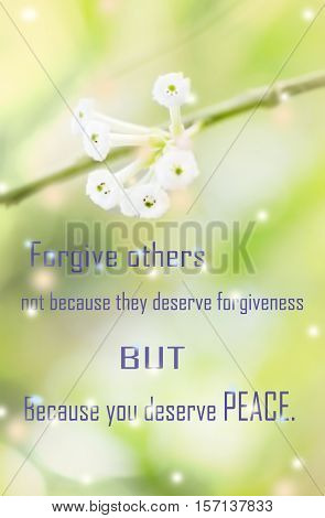 Life quote motivation quote inspiration quote with positive words on sweet dreamy and de-focused white flowers background forgiveness quote positive thinking.