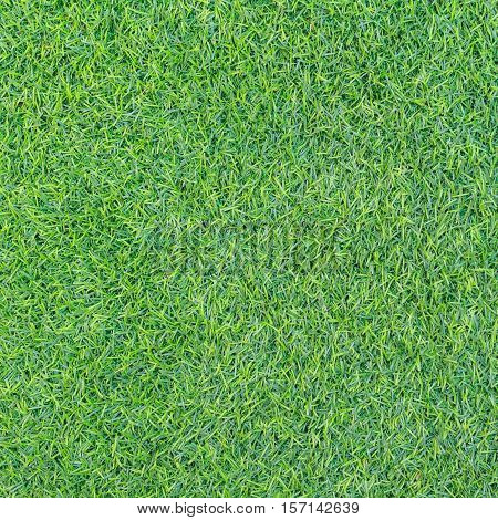 Green grass texture or Green grass background. Top view of artificial green grass for golf course and soccer field. Abstract artificial green grass for design with copy space for text or image.