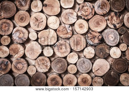 Wood texture or wood background. Wood motifs that occurs naturally. Closeup natural wood detail for interior or exterior design with copy space for text or image.