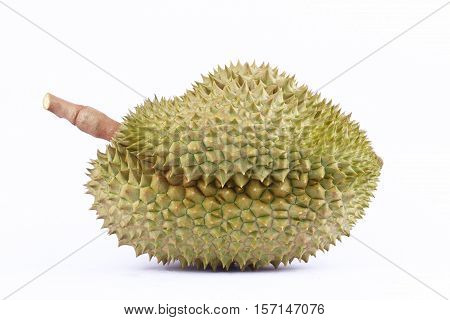 durian mon thong  is fruit  tropical durian and  king of fruits durian on white background healthy durian fruit food isolated
