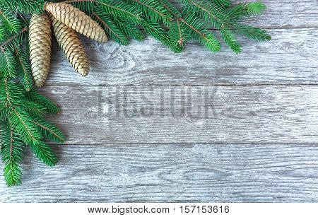 Christmas background with tree branches and pine cones. Fir Branch With Pine Cone. Christmas tree branches with cones on wooden background.