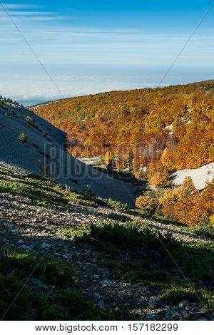 Panoramic view of beautiful Indian Summer autumn in the woods on the slopes of the Mont Ventoux Vaucluse Povence France
