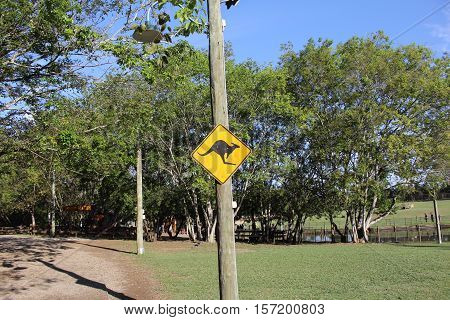 kangaroo sign in the lone pine koala sanctuary