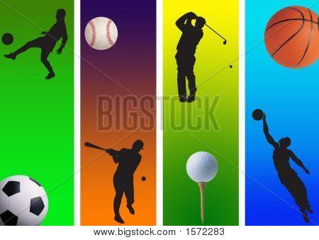 Sports New 11