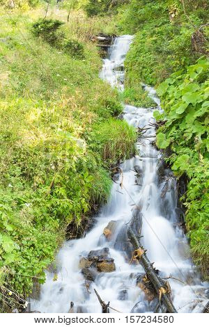 Small Waterfall in Alpen Land with Undergrowth
