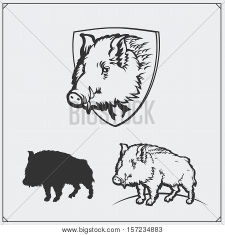 Vector monochrome illustration of a wild boar.