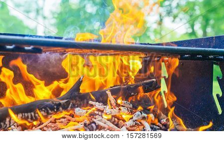 Camp Fire In   Pit At  Campsite