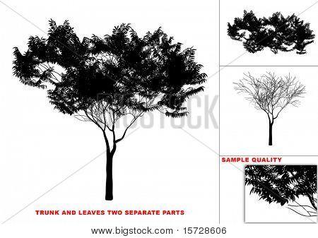 Árbol de vector (dos partes separadas de tronco y hojas)