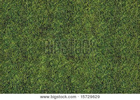 High detailed grass