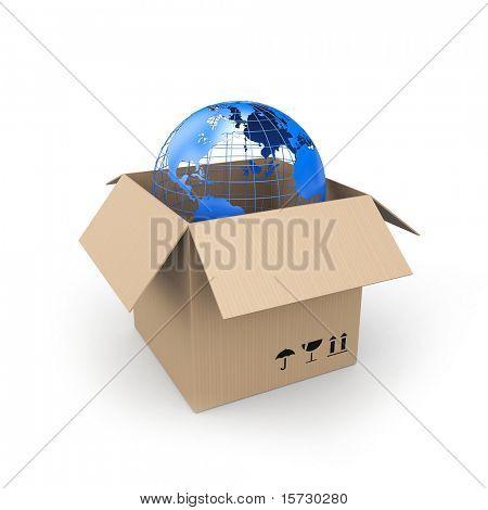 Karton mit globe