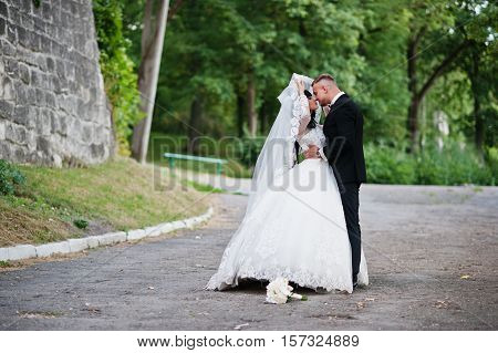 Likable Wedding Couple Stay And Kisses Under Veil At Park.
