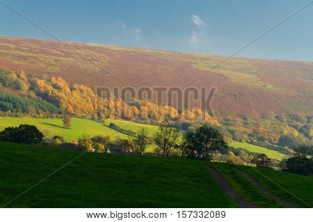 Evening sunlight autumn fall. Hatterrall Ridge in the Black Mountains near Hay on Wye Powys Wales United Kingdom Europe.