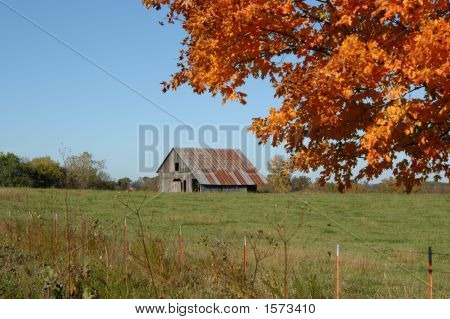 Barn Framed In Orange