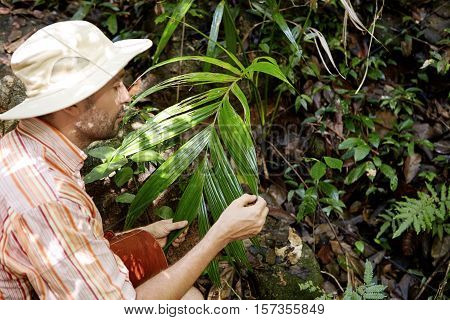 Side Portrait Of Middle Aged Caucasian Ecologist With Briefcase Studying Leaves Of Green Exotic Plan