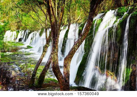 Scenic Waterfall With Crystal Clear Water Among Green Woods